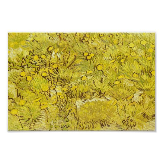 Field of Yellow Flowers, Vincent van Gogh Poster