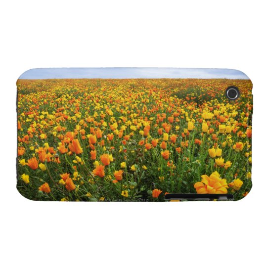 Field of Yellow, Marion County, Oregon iPhone 3 Case-Mate Case
