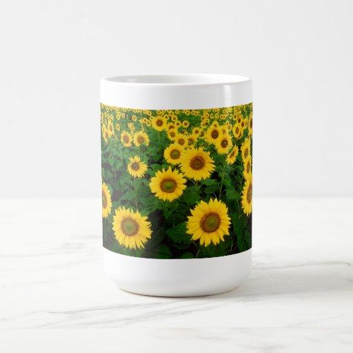 Field of Yellow Sunflowers Coffee Mug