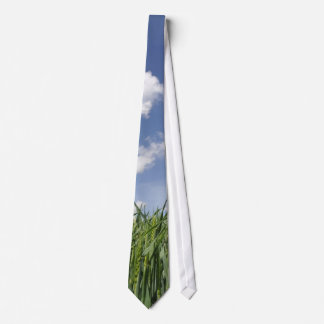 Field of young corn neck tie