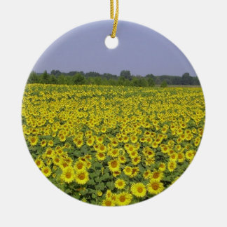 Field off sunflower - Field of sunflower (01) Double-Sided Ceramic Round Christmas Ornament