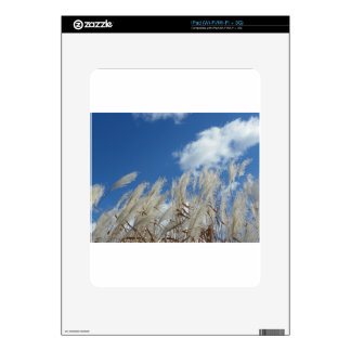 Field Photo Gift Skin For The iPad