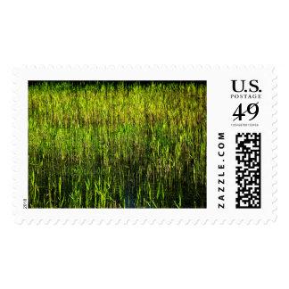 Field Stamp