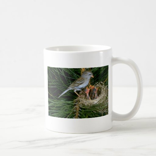 Field Sparrow with young Classic White Coffee Mug