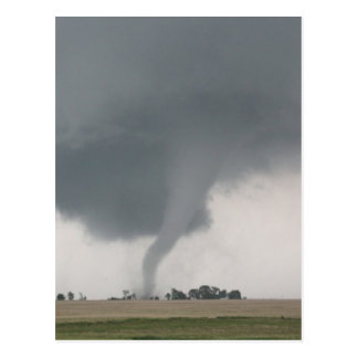 Field Tornado Post Cards