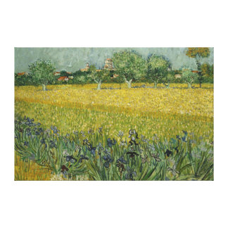 Field with flowers near Arles Canvas