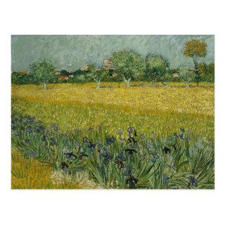 Field with flowers near Arles Postcard
