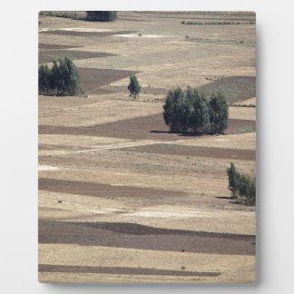 Fields after harvest plaque