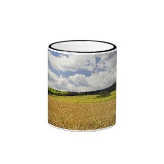 Fields in Hungary Mug