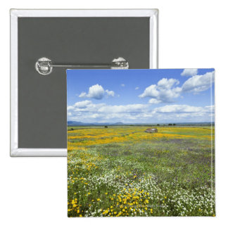 Fields In Springtime Near Guadalupe 2 Inch Square Button