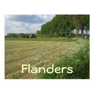 Fields of Flanders Postcard