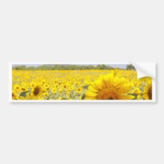 Fields of Gold Bumper Sticker