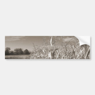 Fields of Grain Bumper Sticker