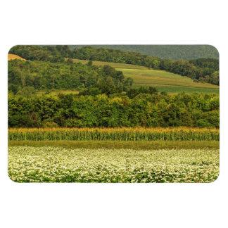 Fields of Grain Magnet