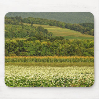 Fields of Grain Mouse Pad
