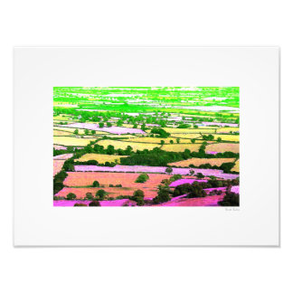 """Fields of Green and Other Colours 16""""x12"""" Photo Print"""