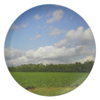 Fields of Green Plate
