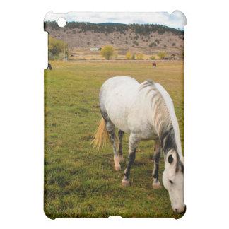 Fields of Horses iPad Case