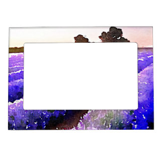 Fields of Lavender Picture Frame Magnet