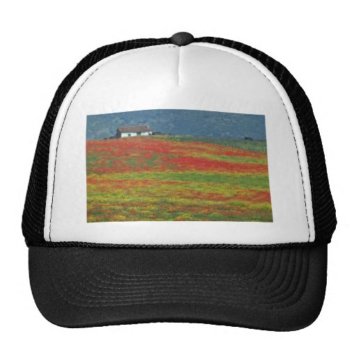 Fields of poppies near Cordoba, Andalusia fl Trucker Hats