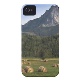 Fields with bailed hay, Alberta, Canada iPhone 4 Case-Mate Case