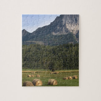 Fields with bailed hay, Alberta, Canada Jigsaw Puzzle