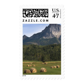 Fields with bailed hay, Alberta, Canada Postage