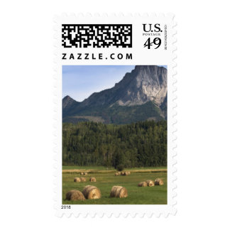 Fields with bailed hay, Alberta, Canada Postage Stamps