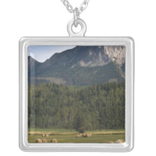 Fields with bailed hay, Alberta, Canada Silver Plated Necklace