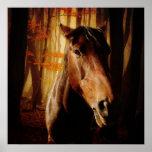 Fieramente Horses Posters