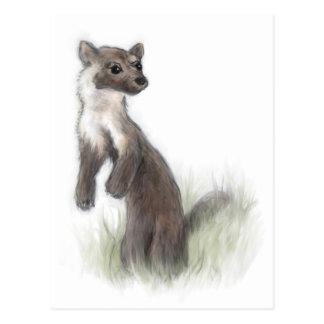 Fierce Little Pine Marten Postcard