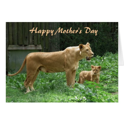 Fierce Momma Lion Mother's Day Card