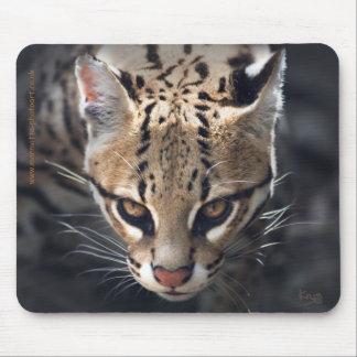 Fierce Mousemat Mouse Pad