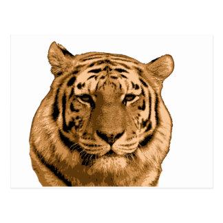 Fierce Tiger Postcard