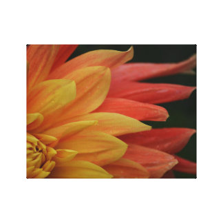 Fiery Flower Canvas Print