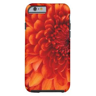 Fiery Flower Tough iPhone 6 Case