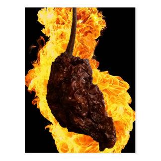 Fiery Ghost Pepper Postcard