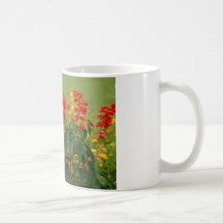 Fiery Red Hot Sally Salvia Flower Garden Coffee Mug