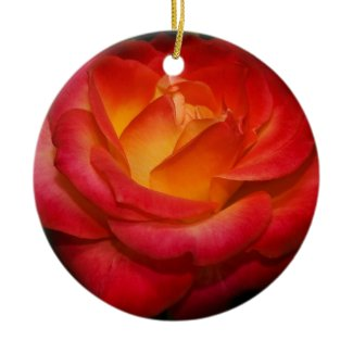 Fiery Red Rose Ornament
