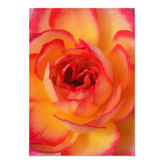 Fiery Rose Invitations
