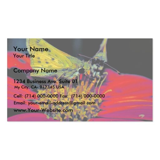 Fiery skipper butterfly on Mexican sunflower Business Card Template