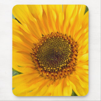 Fiery Sunflower Mouse Pad