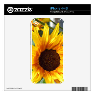 Fiery Sunflowers Skins For The iPhone 4S
