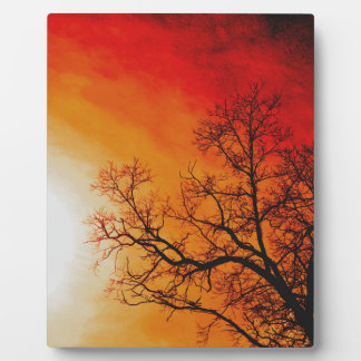 Fiery Sunset & Tree Nature Art Display Plaque