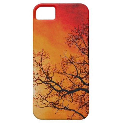 Fiery Sunset & Tree Nature Art iPhone 5 Case