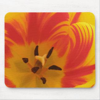 Fiery Tulip Mousepad