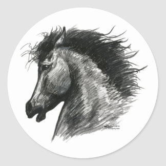 Fiery Wild Horse Classic Round Sticker