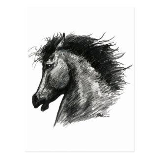 Fiery Wild Horse Postcard