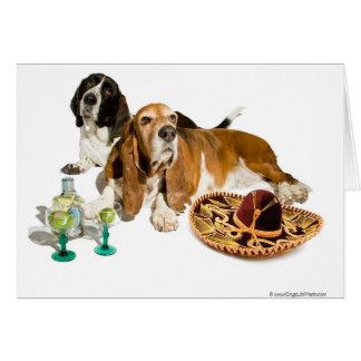 Fiesta Basset Card