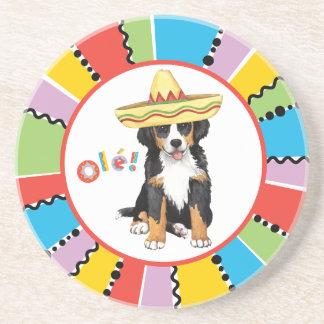 Fiesta Berner Sandstone Coaster